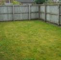 Garden Re-Sized
